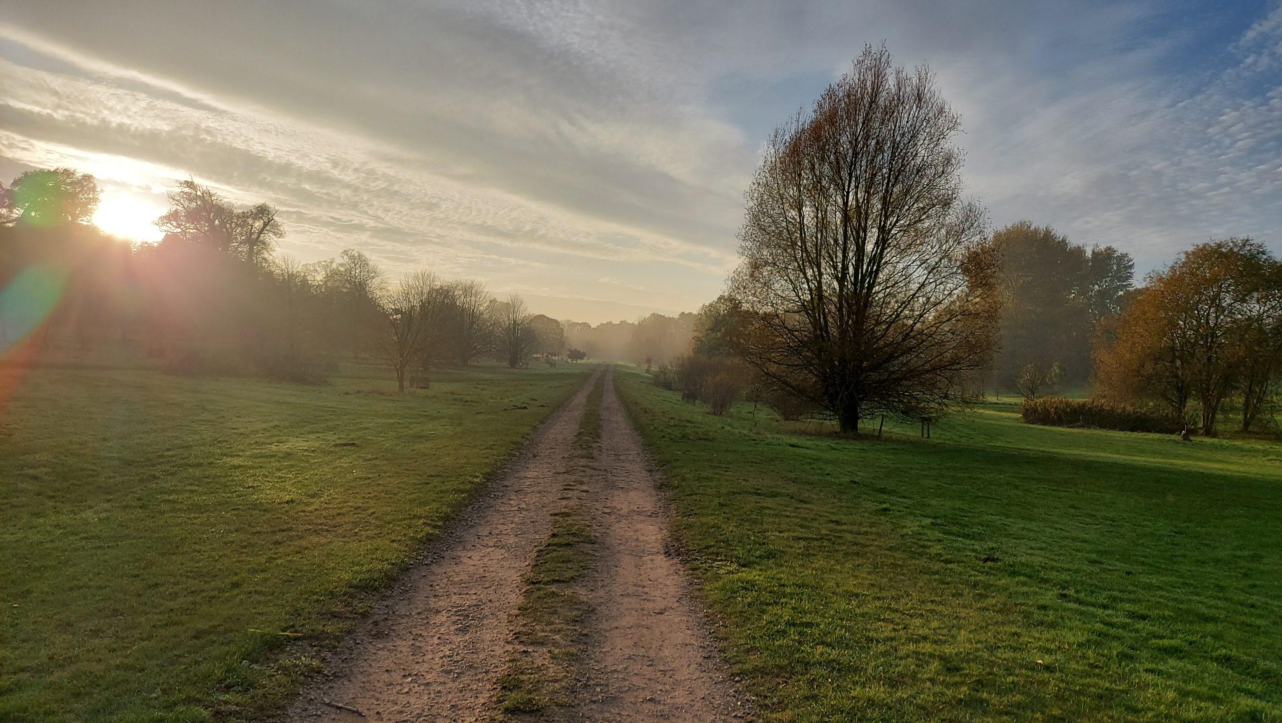 Autumn walks at Yorkshire Arboretum